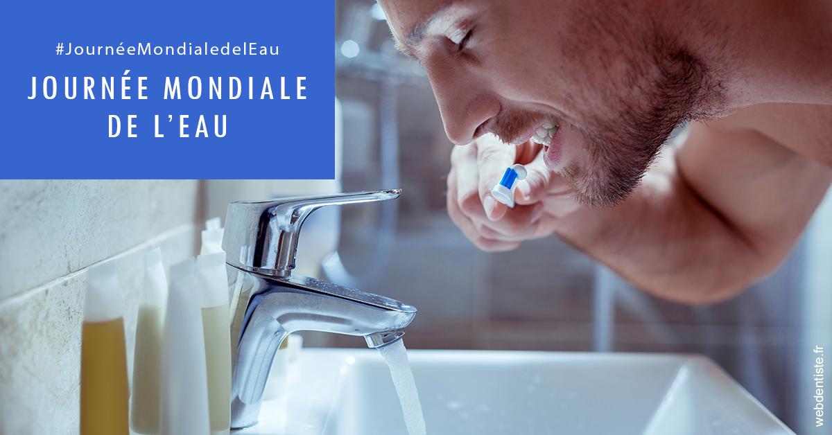 https://dr-nizard-veronique.chirurgiens-dentistes.fr/Journée de l'eau 2