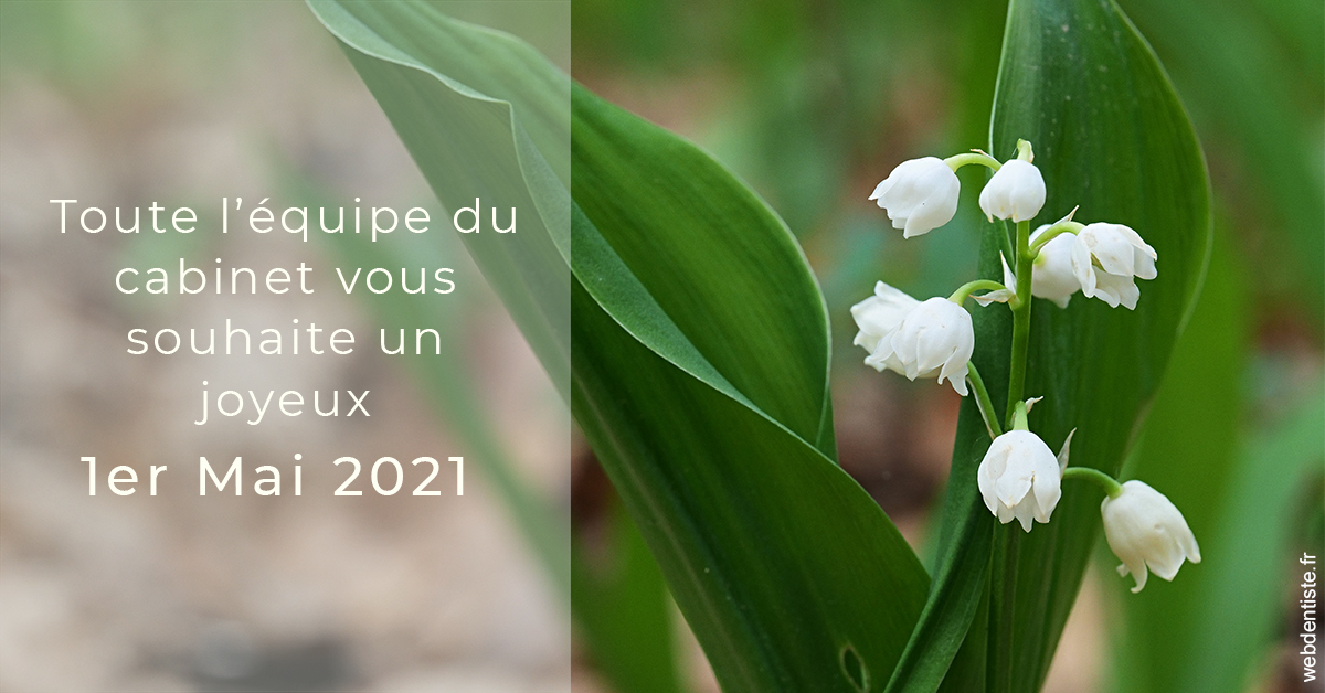 https://dr-nizard-veronique.chirurgiens-dentistes.fr/1er mai 2