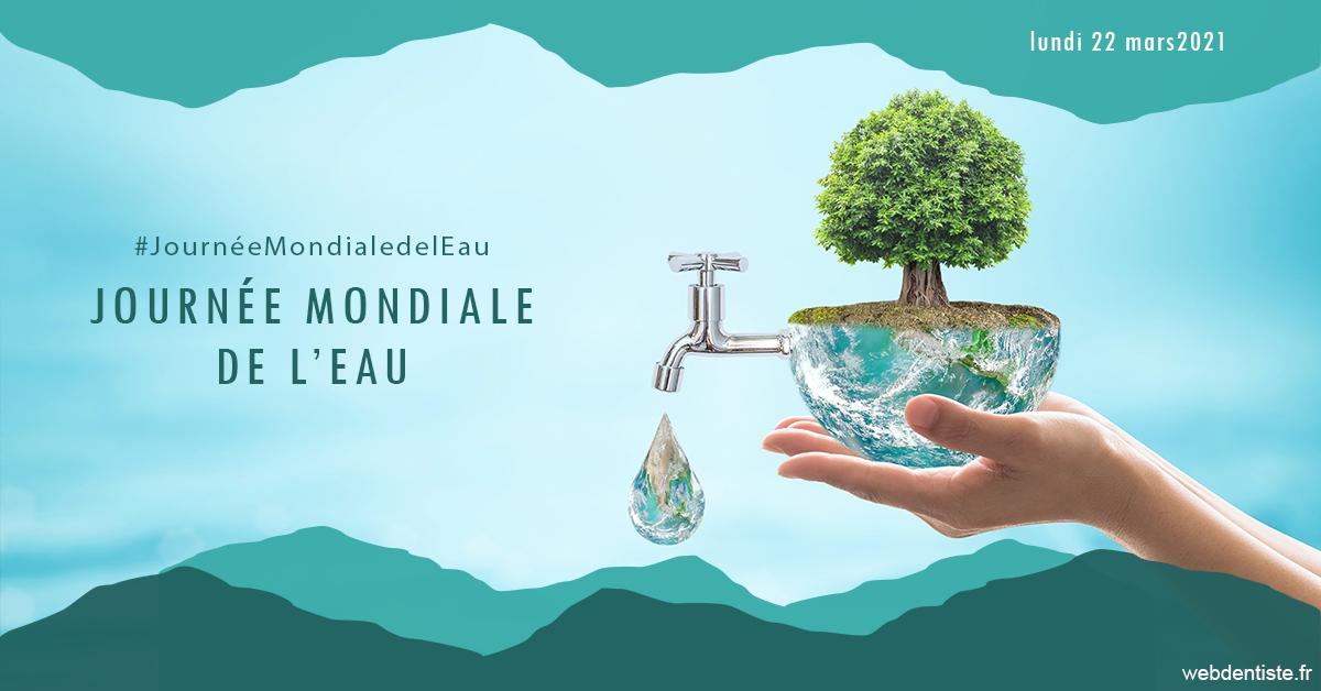 https://dr-nizard-veronique.chirurgiens-dentistes.fr/Journée de l'eau 1